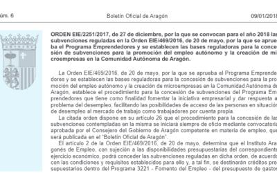 Subvenciones para la promoción del empleo autónomo y la creación de microempresas en Aragón