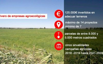 Abierto el plazo para presentar proyectos para las nuevas huertas de Agricultura Ecológica en Movera
