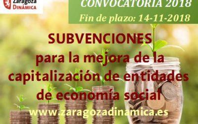 Subvenciones para la mejora de la capitalización de Entidades de Economía Social