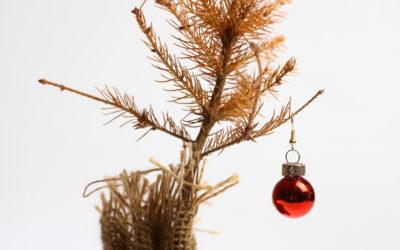 Navidad: una oportunidad para reclamar otro consumo