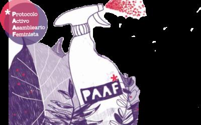Pon en marcha en tu entidad u organización nuestro PAAF! Protocolo Activo Asambleario Feminista