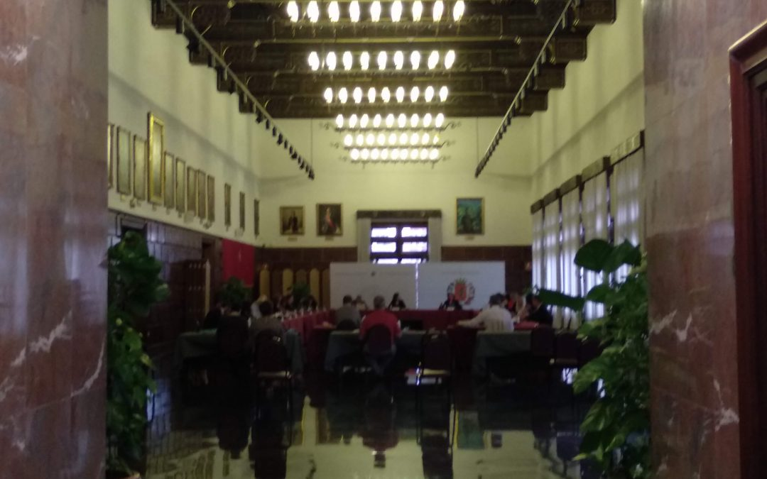 Presentadas nuestras alegaciones al Presupuesto Municipal del Ayuntamiento de Zaragoza para el 2021